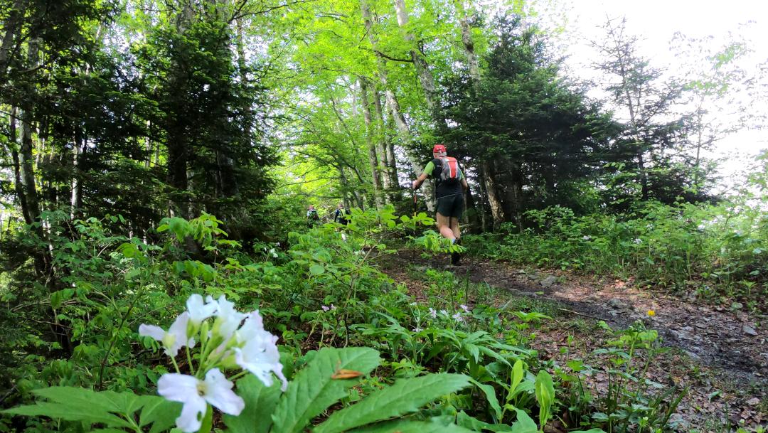 Traversée de la Chartreuse en trail sur 3 jours avec nuit en bivouac